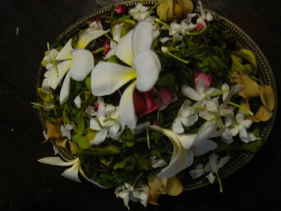 Local flowers at Mrembo Spa, Zanzibar