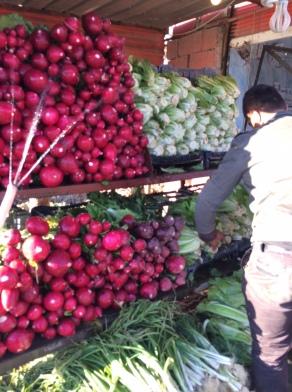Roadside fruit and veg stall, selling radish, lettuce and fruit, just outside Kirkuk, Iraq
