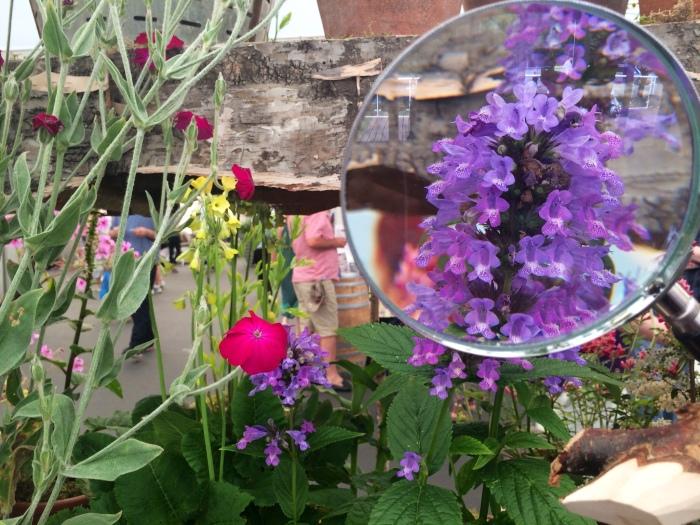 Fantastic floral displays at GROW London