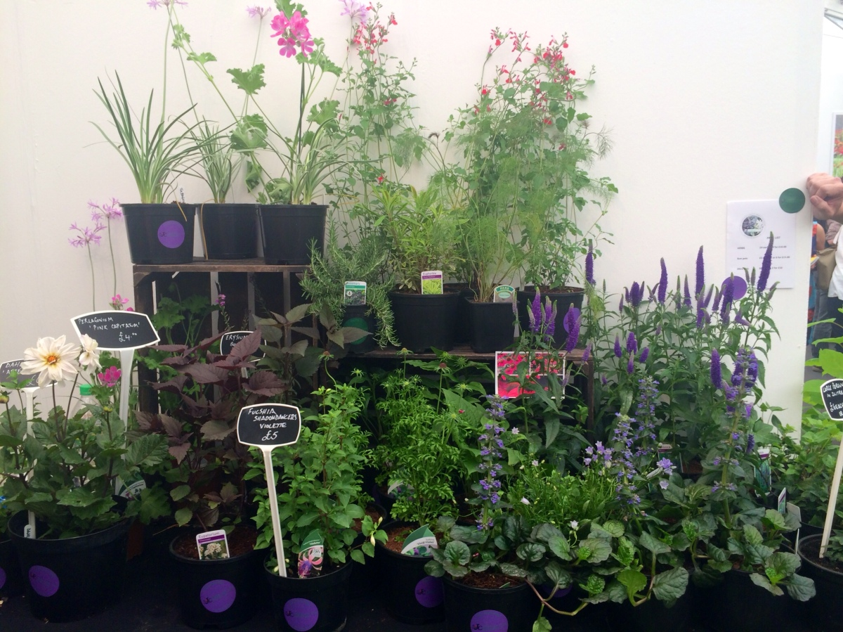 John Cullen Gardens at GROW London Fair