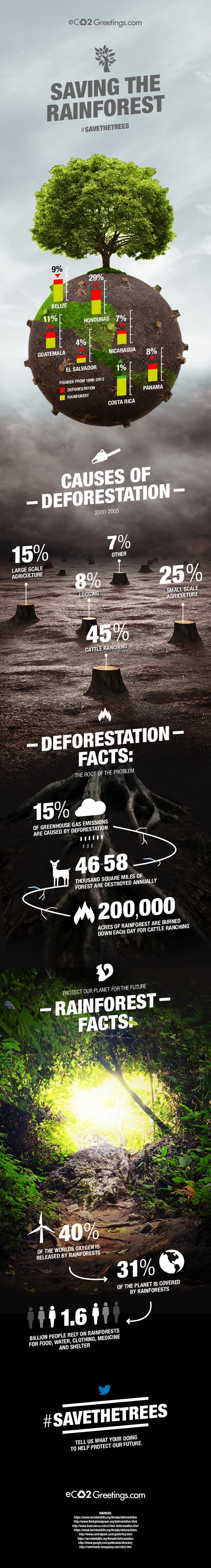 how to stop deforestation by eco2