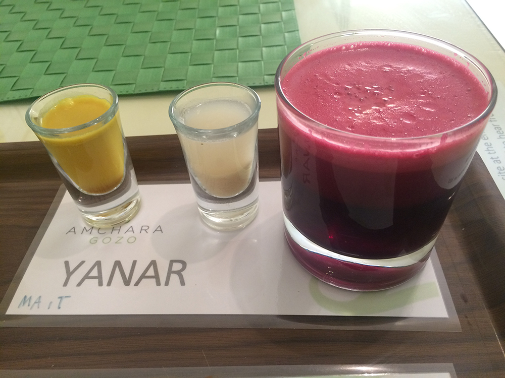 amchara-detox-retreat-review-6